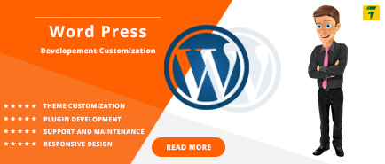 Wordpress Development Companies in California US